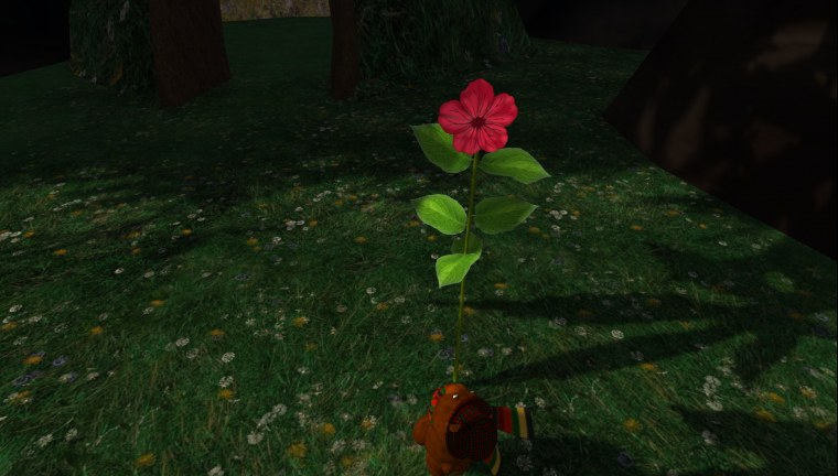 043 The Flower, Raglan Shire.jpg